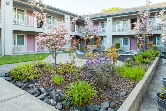 Super 8 by Wyndham Willits : Garden and Fountain Courtyard Morning