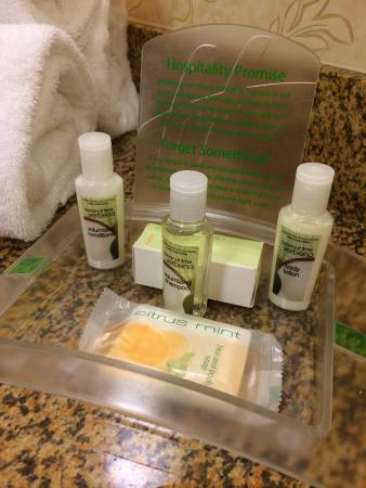 Holiday Inn Hotel & Suites Tallahassee Conference Center North: Our Holiday Inn stay on 8/15. Super clean and provided Bath and Body Works toiletries.