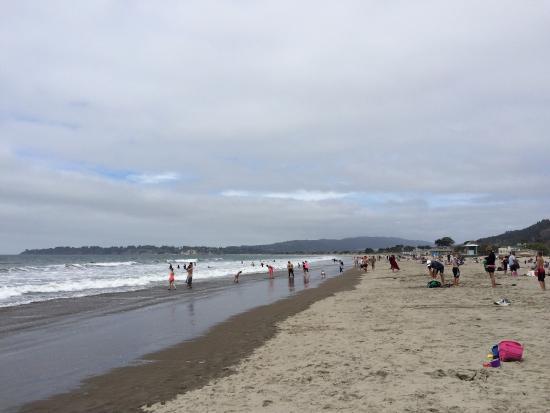 Hotels Near Stinson Beach Ca