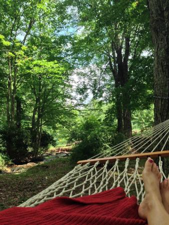 Nothing like an afternoon lying in one of the hammocks enjoying the view and sound of the creek.