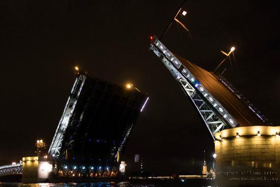 Astra Marine Boat Tours: На ночной прогулке