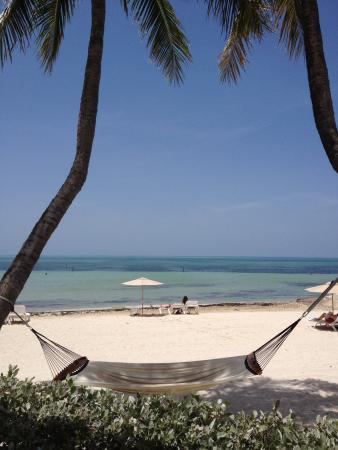 The Reach Key West, Curio Collection by Hilton: The beach!