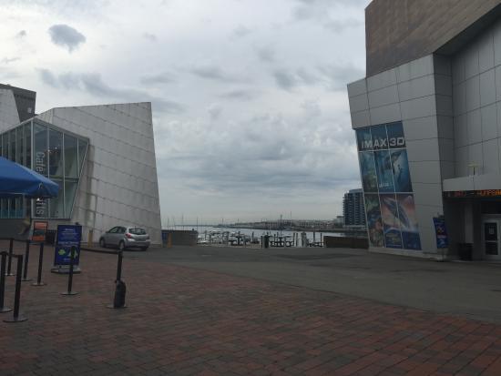 Simons IMAX Theatre at New England Aquarium : Front Entrance Area of Imax and Near The Aquarium