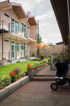 Biruk B&B Addis Ababa: The garden