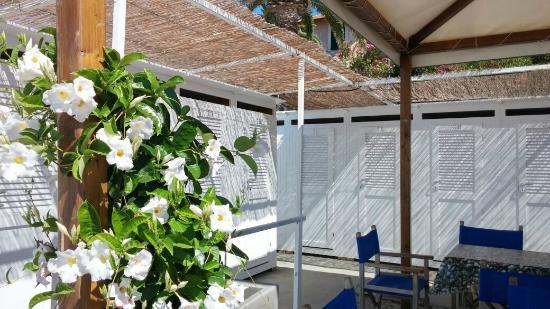 Bagni Lido Moderno - cabine, tavolini e dipladenia - Picture of ...