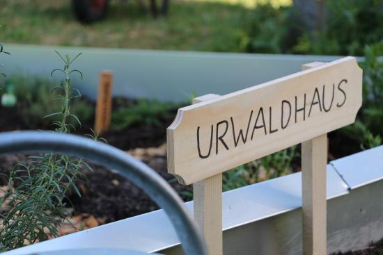 Restaurant zum Bären Urwaldhaus: Urwaldhaus Kräutergarten