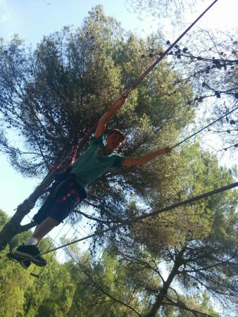 Jungle Parc - Picture of Jungle Parc, Santa Ponsa - TripAdvisor