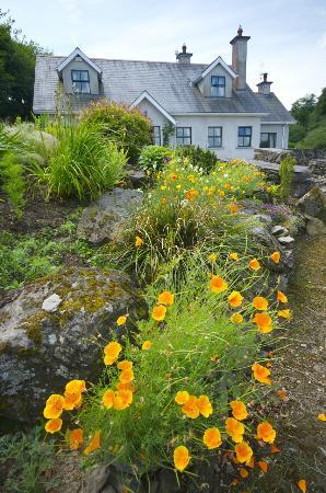 Dungarvan, Irlandia: Garden