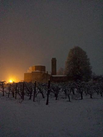 Paesaggi invernali e primaverili in Agriturismo Santa Maria Bressanoro