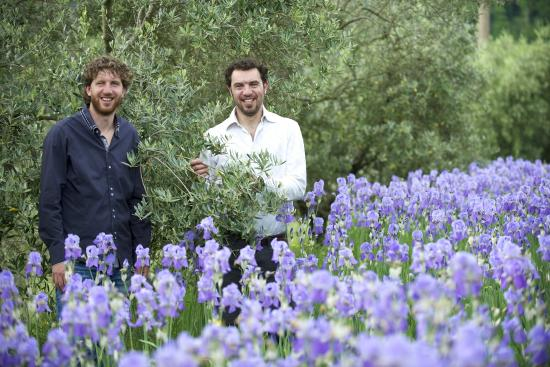 San Polo in Chianti, Italia: Gionni and Paolo Pruneti between Olives trees and Iris