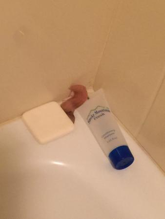 Days Inn Pigeon Forge South : Used soap, shampoo, and bandaid!
