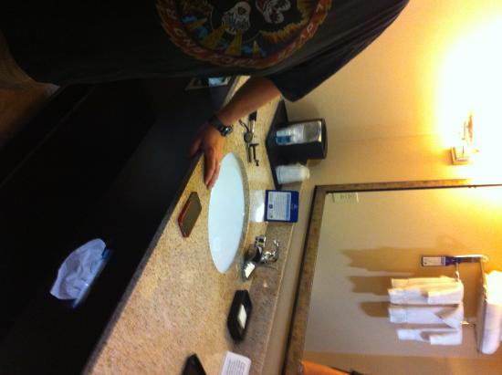 BEST WESTERN PLUS Goodman Inn & Suites: double queen room