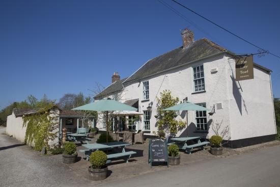 ‪The Lazy Toad Inn‬
