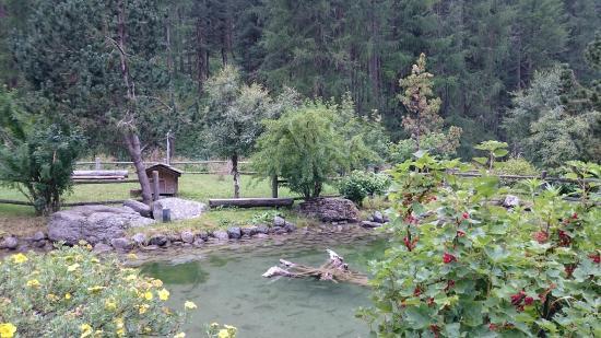 Landgasthof Crusch Alba ed Alvetern : Gartenteil