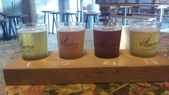 Triggerfish Brewery