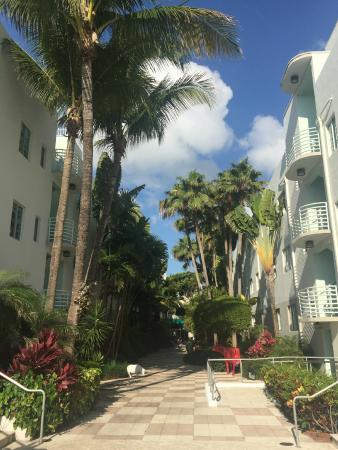 Kimpton Surfcomber Hotel The South Beach Miami