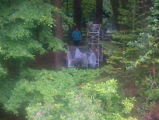 Glenariffe, UK: Peeking at the wedding at the waterfall