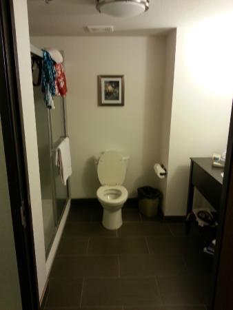 Holiday Inn Express Hotel & Suites Carlsbad Beach: Bathroom