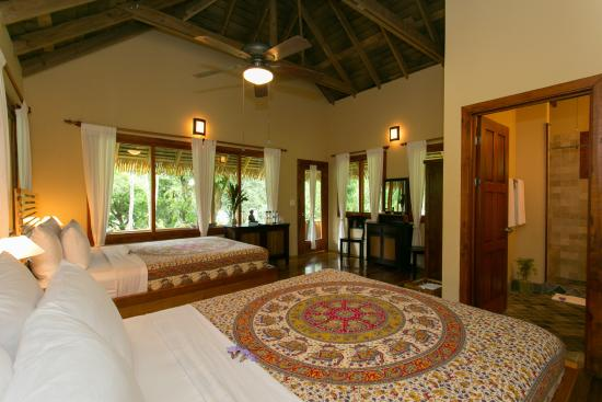 Copa de Arbol Beach and Rainforest Resort: Guest Room