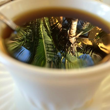 Casa Kau-Kan: A cup of tea and reflection of the palm trees in the restaurant.