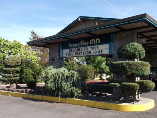 Peppertree Inn: Front of Inn