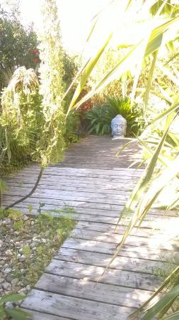 Le clos des bambous : Entrée du clos des bambous