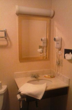 Newport Ambassador Inn & Suites : bathroom