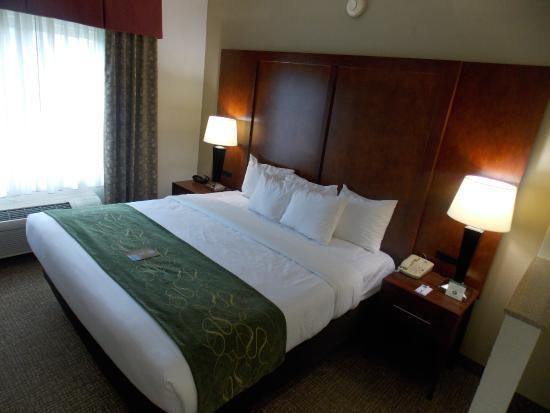 Comfort Suites Inn at Ridgewood Farm: King suite