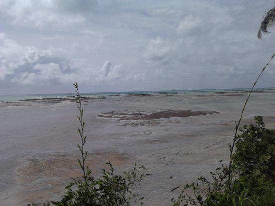 Japaratinga Beach: Visão a partir do Mirante! Lindo!