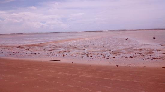 Japaratinga Beach: Maré seca, boa caminhada para um banho de mar...