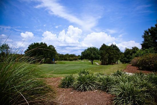 Santa Rosa Golf Beach Club The Course At