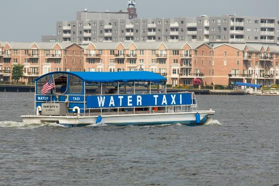 One Day in Baltimore Travel Guide on TripAdvisor