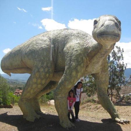 Foto De Villa De Leyva Departamento De Boyaca Parque Tematico Gondava El Gran Valle De Los Dinosaurios Tripadvisor Hace parte del conjunto de museos de la universidad nacional de colombia adjunto a la facultad de ciencias sede bogotá. parque tematico gondava