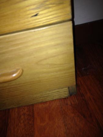 Victoria Maiorino: Furniture