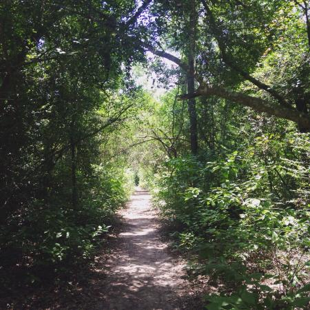 George Mitchell Nature Preserve: photo3.jpg