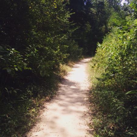 George Mitchell Nature Preserve: photo7.jpg