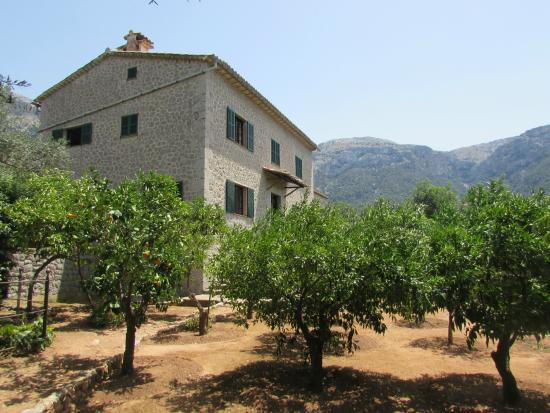 La Casa de Robert Graves - Picture of Robert Graves House, Deia - TripAdvisor