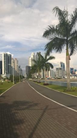 Foto de The Panams