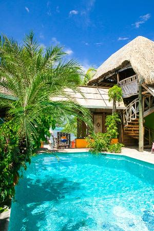 Tranquilseas Eco Lodge and Dive Center: our fresh water pool