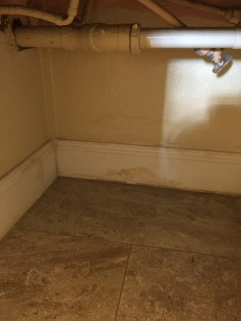 Creekside Lands Inn: Under sink; in fact most baseboards throughout the room looked like this.