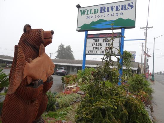 Wild Rivers Motor Lodge: Bear, fish, hotel sign