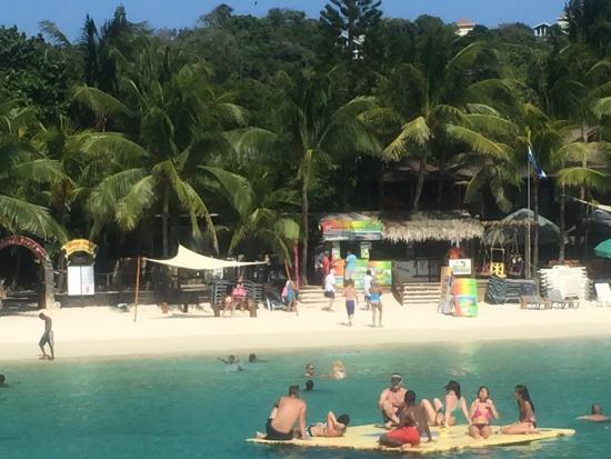 View of the beach area from the water picture of for Roatan dive resort