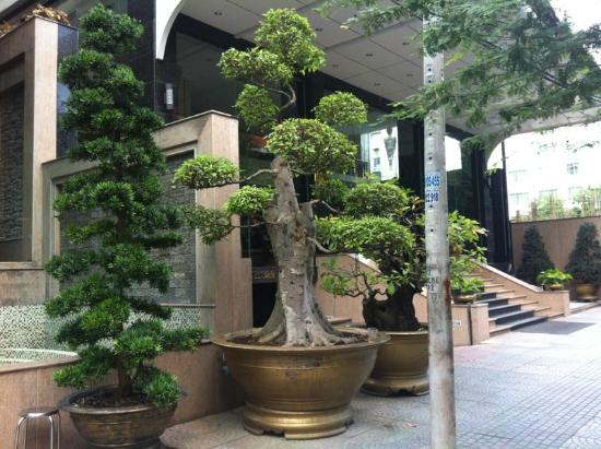 Aquari Hotel: Вход в отель