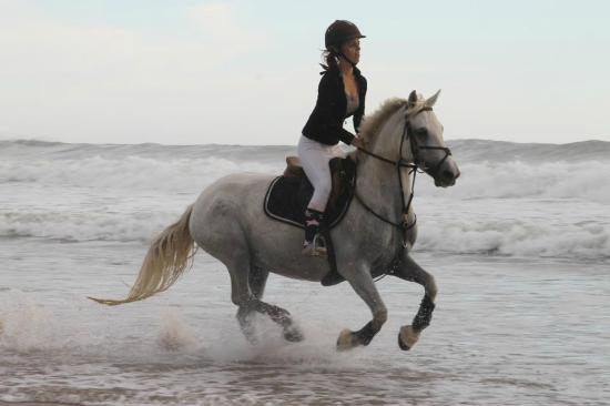 Centre Equestre de Sauveterre