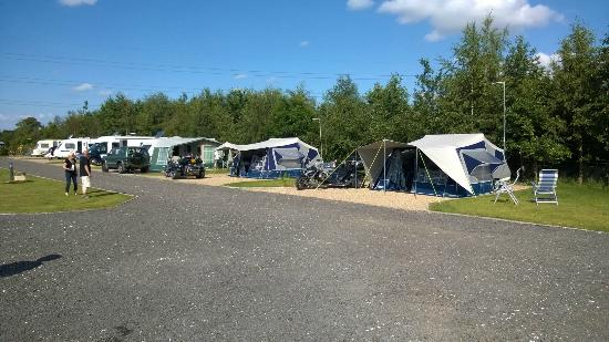 York Caravan Park YCP Tents on some of our all weather tent pitches at York & Tents on some of our all weather tent pitches at York Caravan Park ...