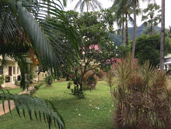 Austrian Garden Tai Pan Village: garden