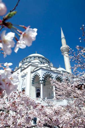 东京清真寺暨土耳其文化中心