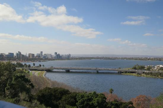Kings Park and Botanic Garden : Vista de Perth do kings Park