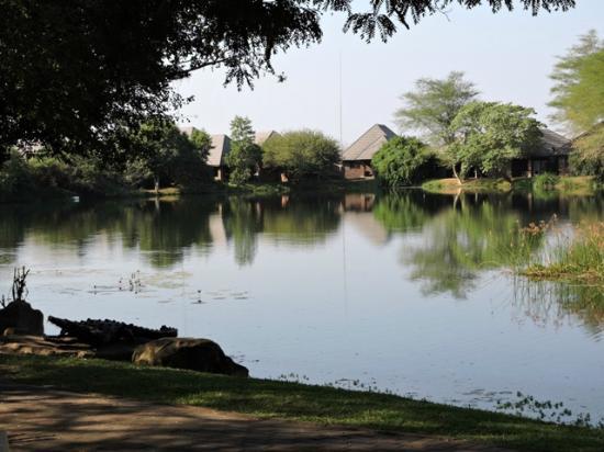 Ngwenya Lodge: Units at one of the dams