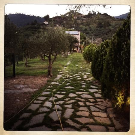 La Cabana has beautiful grounds